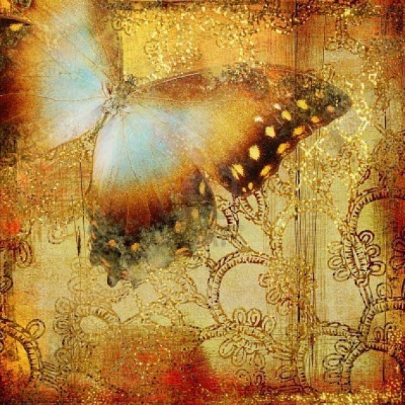 Коричневые обои с большой бабочкой и оригинальным орнаментом