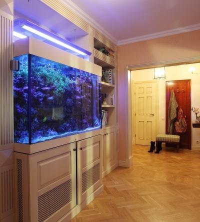 Стильно оформленный большой аквариум