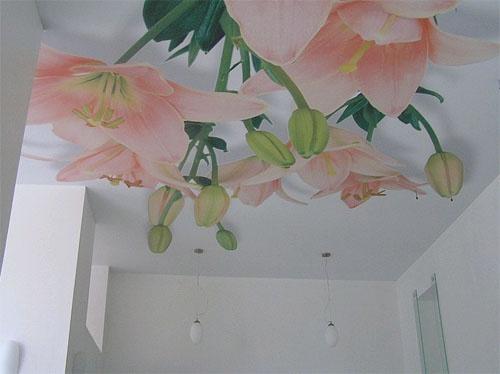 Тканевый натяжной потолок с объёмным 3D-рисунком