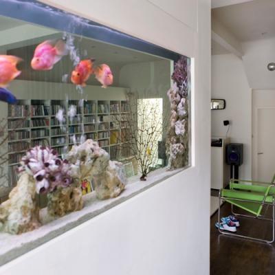 Сквозной прозрачный аквариум в стене-перегородке